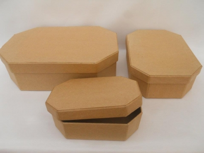 Caja Carton Octogonal V. Grande Lisa 20x13x6.5
