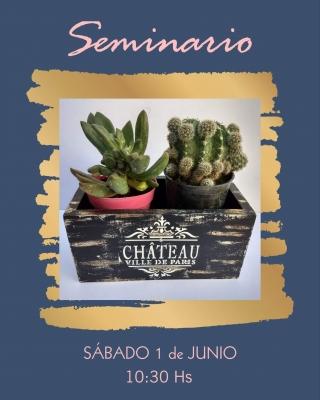 Seminario Porta Cactus
