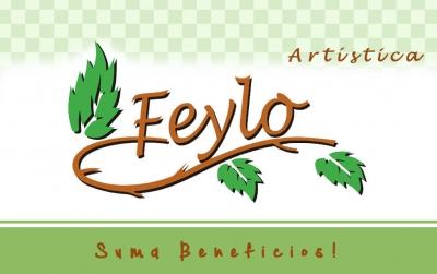 Tarjeta De Regalo Feylo X $500