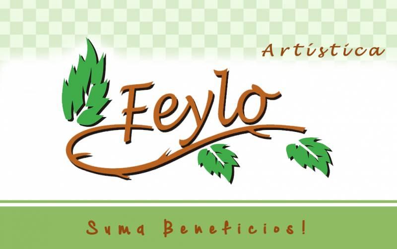 Tarjeta De Regalo Feylo X $1.000