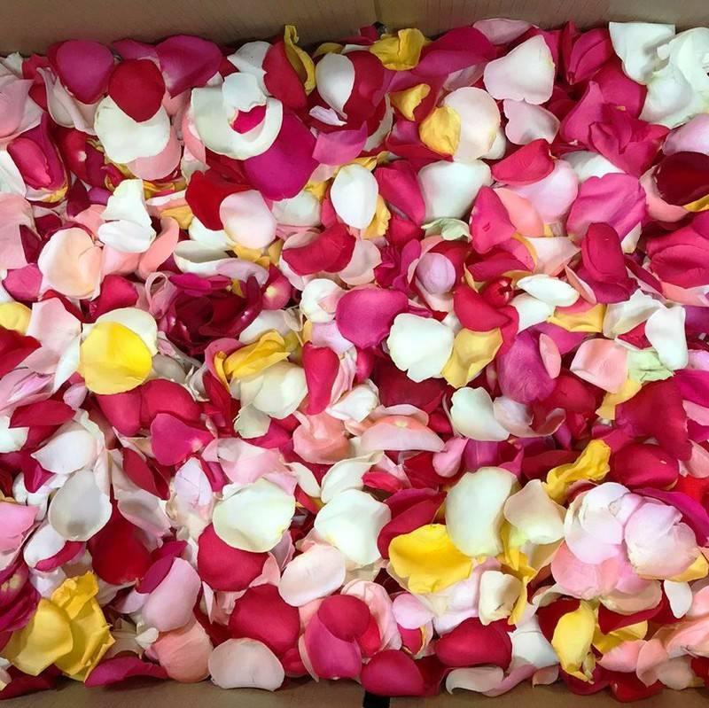 Petalos De Rosa Naturales (15 Grs)