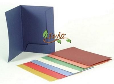 Carpeta Presentacion Color 200 Gr