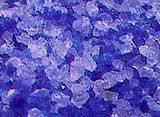 Silicagel X 200gs (para Disecar Floresy Frutas)